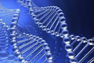 Grafik einer DNA-Doppelhelix.