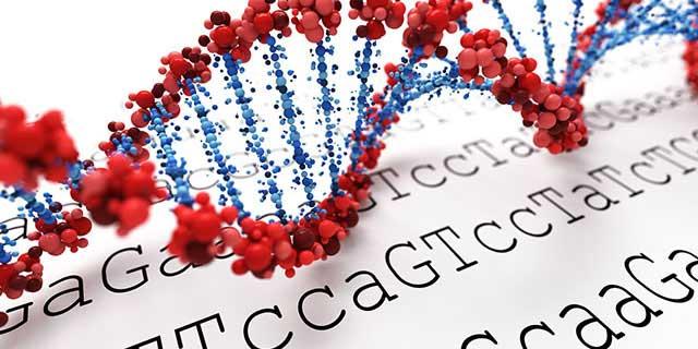 Grafik einer DNA-Doppelhelix, die auf einem Untergrund liegt, auf dem in Buchstaben eine Basensequenz geschrieben ist. - © SSilver/fotolia