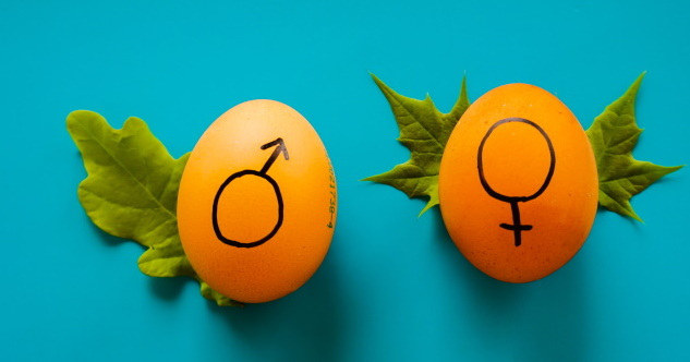 Zwei orangefarbene Hühnereier mit Symbolen für männlich und weiblich - © Dainis Graveris/unsplash.com