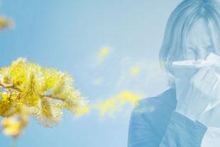 Frau mit Taschentuch, fliegende Pollen - ©winyu/stock.adobe.com
