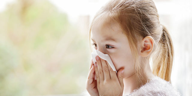 Bei Heuschnupfen kommt es zu allergischen Symptomen wie niesen.