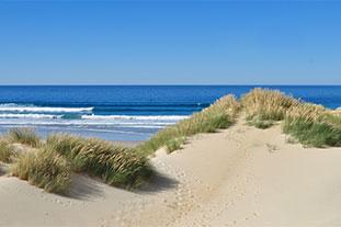 Blick von einer Düne auf die Nordsee: im Vordergrund ist Sand der Düne mit typischem spärlichen Grasbewuchs, im Hintergrund ist das Meer.